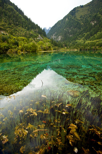 TIBET JIUZHAIGOU VALLEY SCENIC AREA 9 & UNESCO WORLD HERITAGE SITE OF NATURAL ORDER 0714 AJ