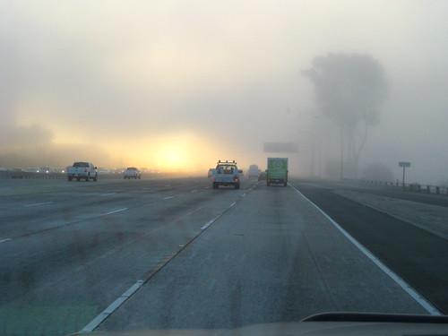 Fog On The 405FWY by GCRad1