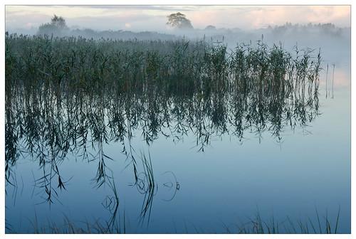 fog conradharley loughnaannagh