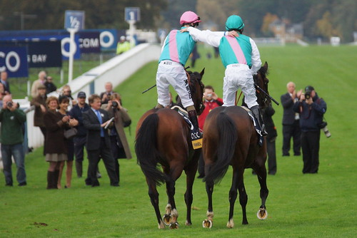 Farewell mighty Frankel by CharlesFred