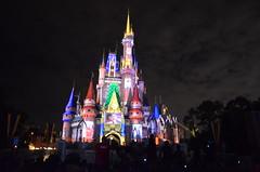world, walt disney world, landmark, evening, light, night, amusement park,