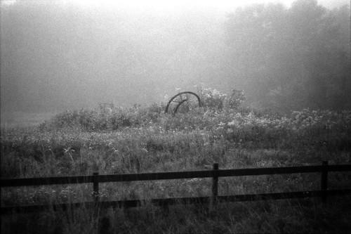 Fenced II