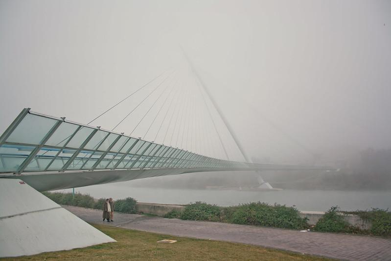 Paseo con niebla