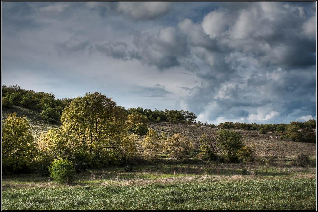 Nubes contra árboles II - Castromonte (Valladolid)