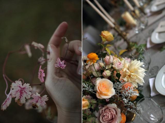 roses_autumn5