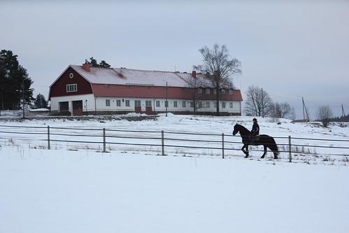 Riding Through Snow