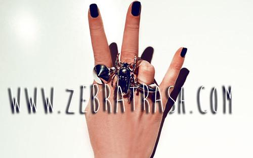 www.zebratrash.com