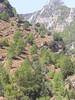 Kreta 2003 174