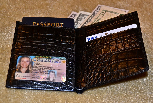 travel wallet and passport holder