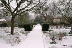 walled garden in the snow