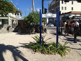 Our First Stop in Grand Cayman