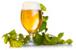hop-cones-and-beer