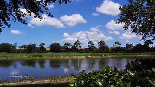 winter lake nature clouds canon golf skyscape landscape yahoo google flickr florida fl aol naturephotography southwestflorida condoview leecountyfl esterofl floridagolf flickriver flickrfromyahoo fairwaysandgreens pelicansoundcountryclub robertbobbypowell aolimagesofflorida imagesofflorida imiagesofesteroflorida
