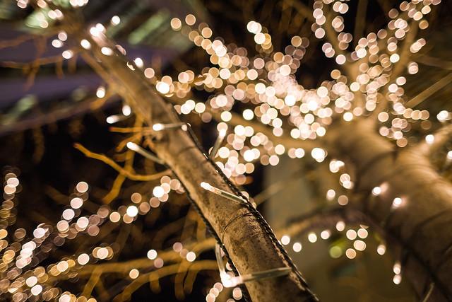 20130122_01_Marunouchi Illumination