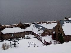 Snow pics 23rd Jan 2013 024