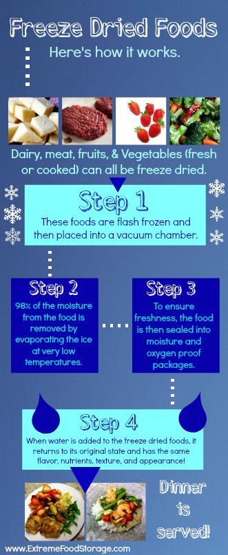 The Freeze Dried Food Process