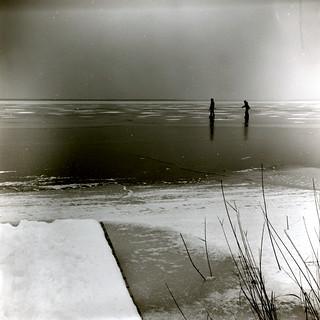29 / 365 - neusiedler on ice