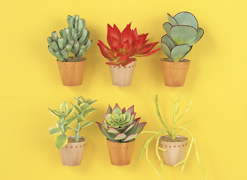 paper-succulents-kogamicraft
