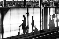 Gares, rails et trains