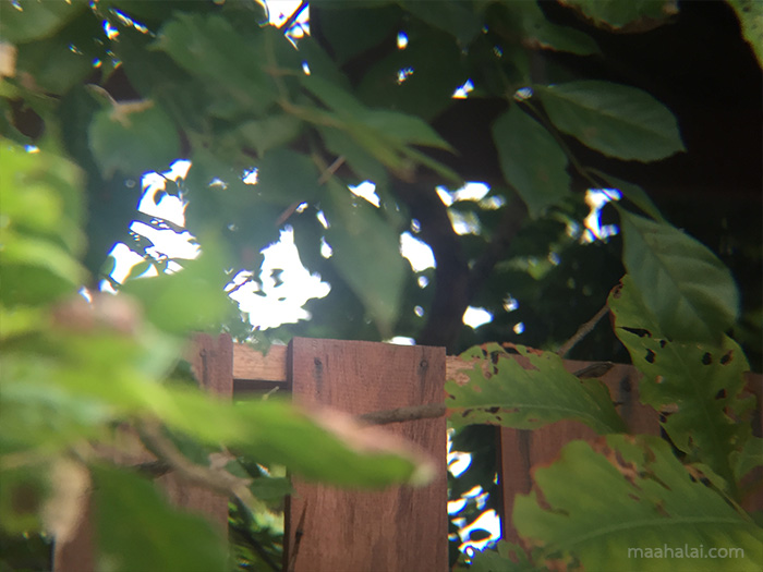 12x Telescope Zoom Lens