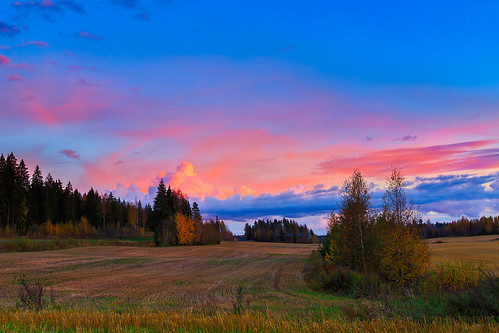 trees sunset sky field clouds suomi finland landscape countryside colourful lappeenranta southkarelia
