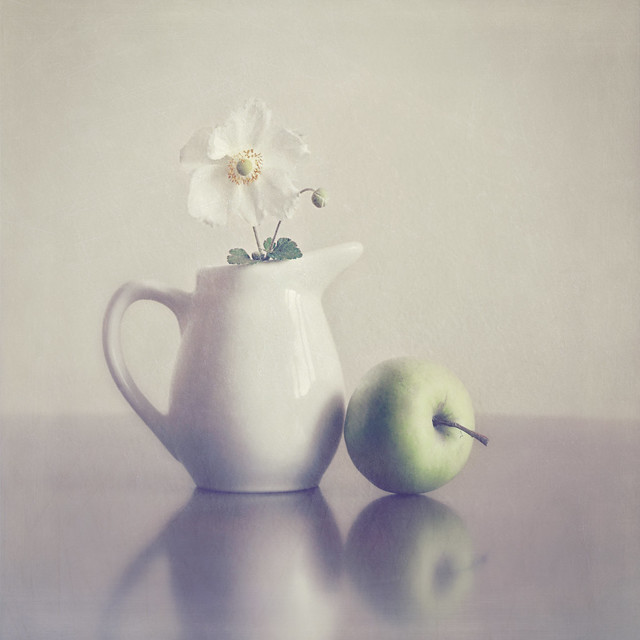 Creative Still Life Photography