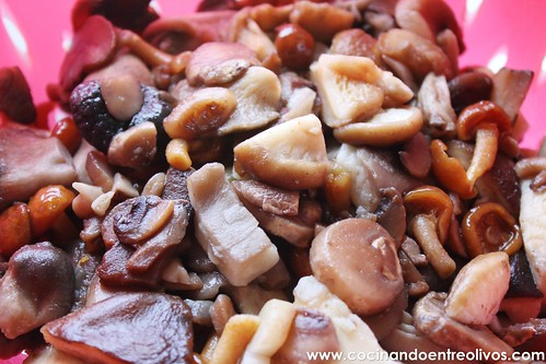 Samosas rellenas de hongos (2)