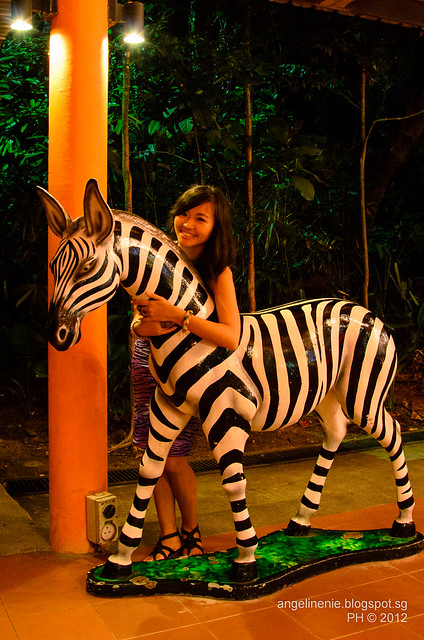A and the Zebra
