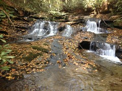 Small Falls on Martin Creek