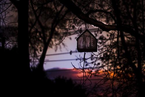 sunset fall birdhouse
