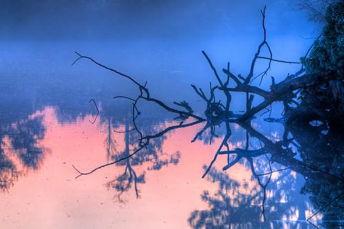county morning pink blue orange sun yellow sunrise magic maryland hour harriet rays blackwater dorchester tubman