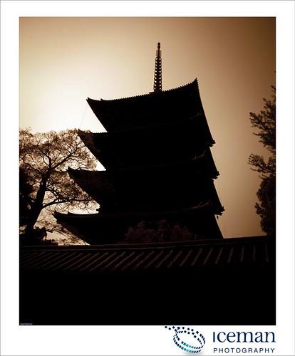Toji Pagoda  495