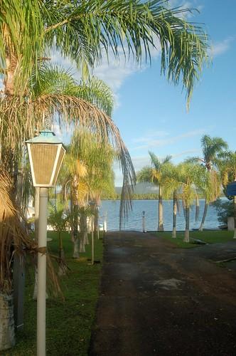 Blick zur Lagune an Palmen vorbei