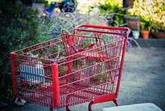 furniture(0.0), play(0.0), playground(0.0), shopping cart(1.0),