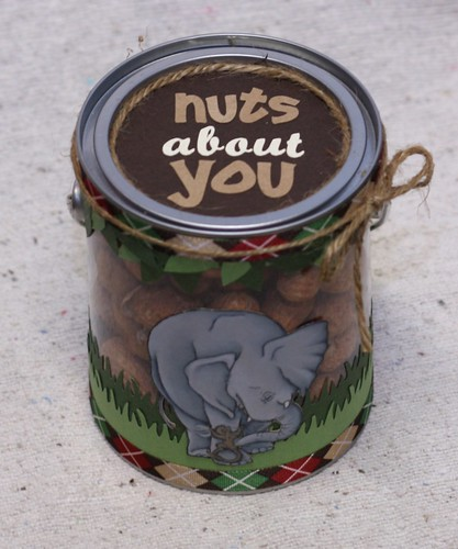Nuts About You Paint Can