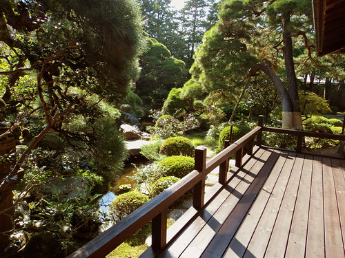 Yamamoto's House Terrace