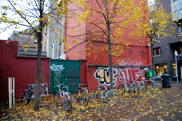 fall and graffiti