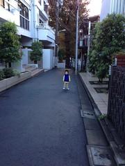 朝散歩 (2012/10/29)