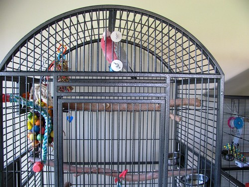 My friend's galah's cage - upper half