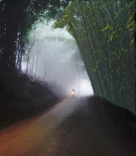 riding through fog