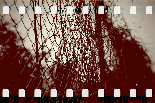 art film fence dark landscape dof bokeh gothic goth vine overcast 35mmfilm ugly gloom nikon50mm nikond600 theartofdestruction