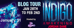 indigo awakening blog tour banner