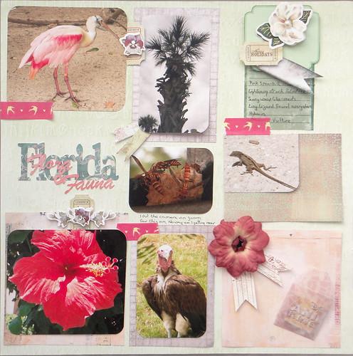 Florida Flora & Fauna