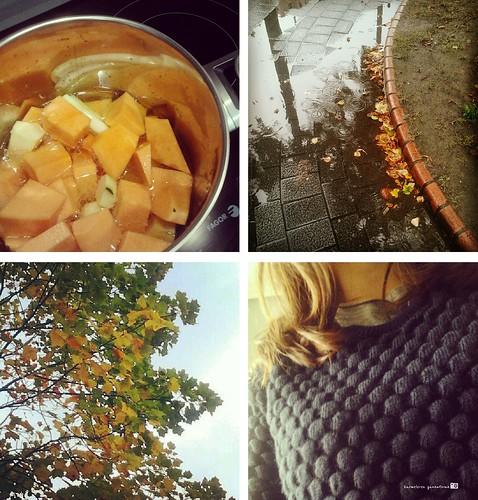 Sintomas del otoño
