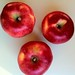 Heirloom Apples--Melrose