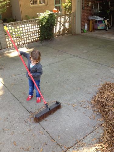 lucy raking 3