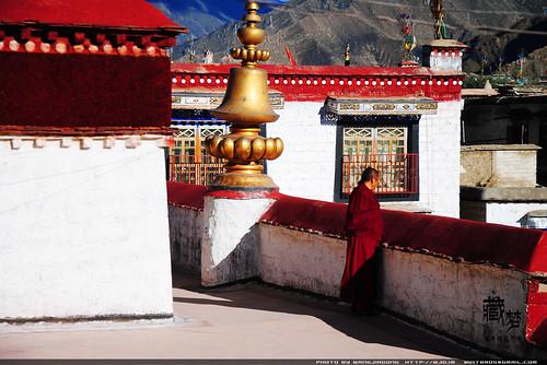 8102235285 fcdd2b92dd 藏梦●追寻诺亚方舟之旅:神秘藏传佛教   王佳冬个人博客