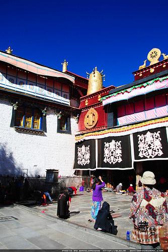 8102252452 e670858325 藏梦●追寻诺亚方舟之旅:神秘藏传佛教   王佳冬个人博客