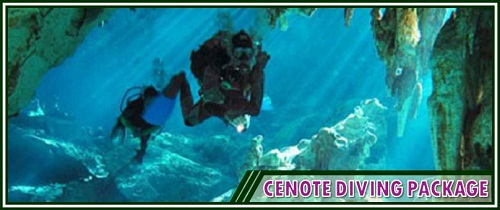 Hidden Worlds World Famous Cenote Dive Package