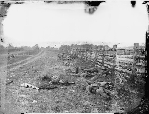 Dead Confederates at Antietam